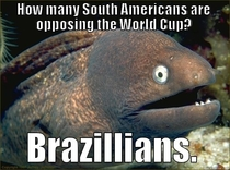 World Cup Woes