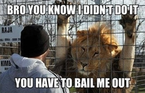 You have to bail me out
