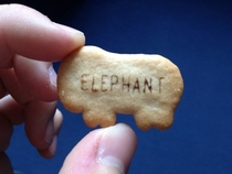 Youre really starting to strain the imagination animal biscuits